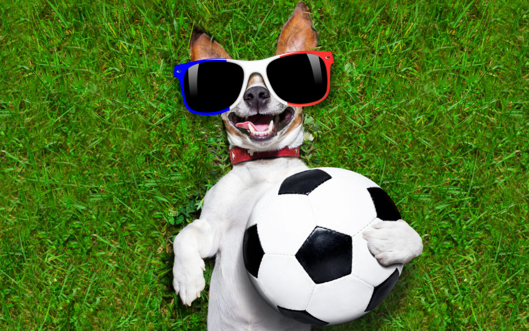 Watch the FIFA Women's World Cup Soccer Games at Indio Grand Marketplace